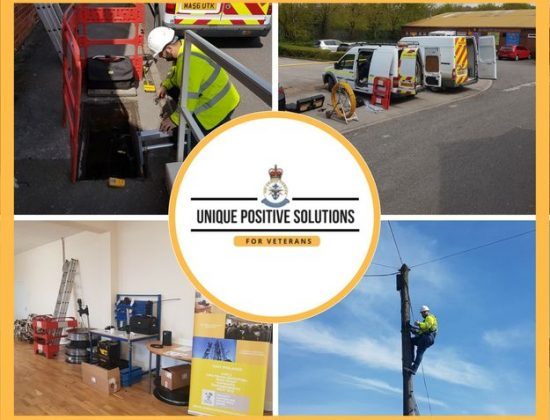 Unique positive solutions LTD